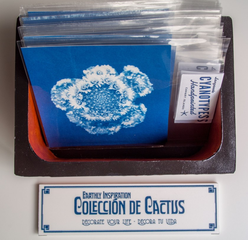 cactus collection box