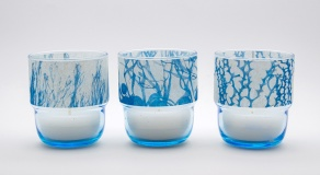 candle glasses Algae