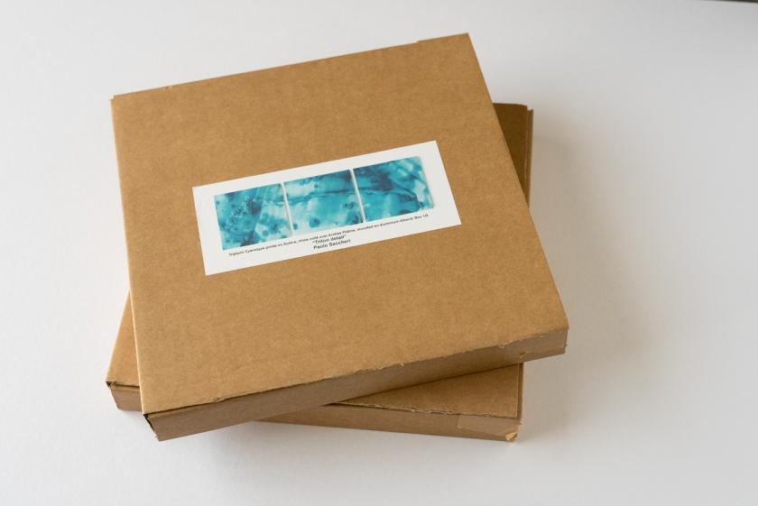 Triton detail boxes1