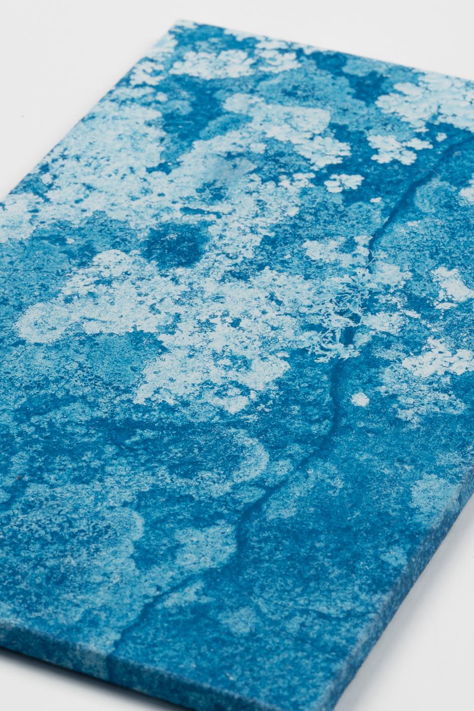 licheni02d_DSC5096